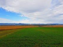Campos e as montanhas como o fundo Foto de Stock Royalty Free