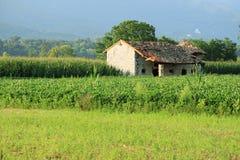 Campos e casa velha foto de stock royalty free
