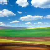 Campos e fundo coloridos abstratos surpreendentes do céu Fotos de Stock