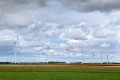 Campos e moinhos de vento do Tulip imagens de stock