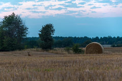 Campos e prados durante o por do sol Imagem de Stock Royalty Free