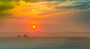Campos e prados durante o por do sol Foto de Stock Royalty Free