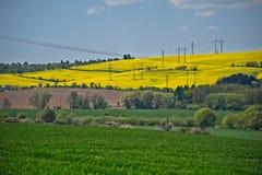 Campos e rede elétrica verdes e amarelos foto de stock
