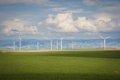 Campos e turbinas eólicas de trigo imagens de stock royalty free