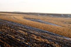 Campos em montanhas no inverno Fotos de Stock Royalty Free