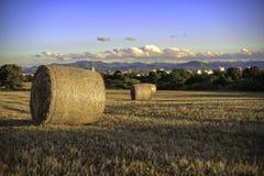 Campos em Sardinia foto de stock royalty free