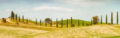 Campos em Toscânia Imagem de Stock Royalty Free