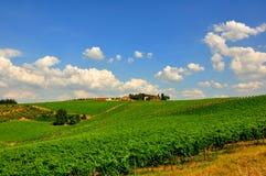 Campos em Toscânia, Italy Fotos de Stock