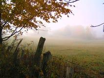 Campos en la niebla imagenes de archivo