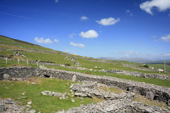 Campos en la península de la cañada, Irlanda Imagenes de archivo