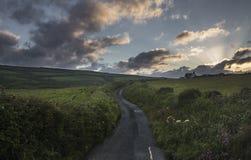 Campos estrechos de Asphalt Road Across Coastal Farming en País de Gales fotografía de archivo
