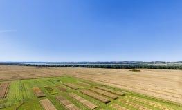 Campos experimentais agrícolas fotografia de stock