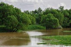 Campos inundados Imagenes de archivo
