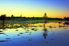 Campos inundados foto de archivo