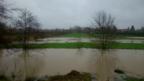 Campos inundados Imagens de Stock