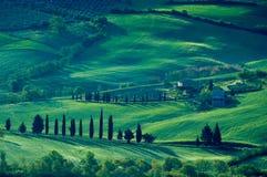 Campos italianos imagem de stock royalty free