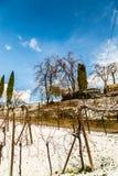 Campos italianos com neve Foto de Stock Royalty Free