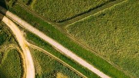 Campos lisos ideais Verde e linhas Estrada imagens de stock