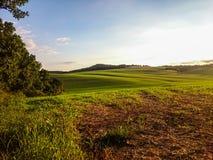 Campos maravilhosos de Eslováquia Fotos de Stock