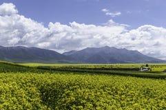 Campos, montañas, nubes y el cielo azul Fotos de archivo libres de regalías