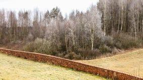 Campos montanhosos gelados da opinião do campo com árvores Imagens de Stock Royalty Free