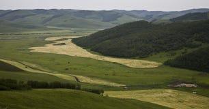 Campos nas montanhas Fotos de Stock Royalty Free