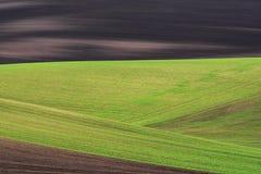 Campos ondulados abstratos em Moravia sul Fotos de Stock