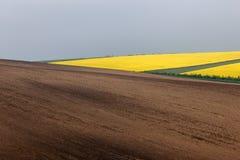 Campos ondulados abstratos em Moravia sul, república checa Imagem de Stock Royalty Free