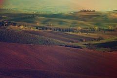 Campos ondulados en Toscana Fotografía de archivo