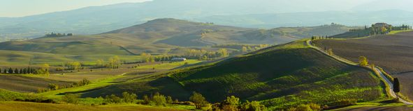 Campos ondulados en Toscana Fotos de archivo