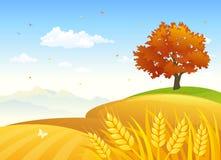 Campos rurales del otoño stock de ilustración