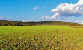 Campos sin fin verdes de la primavera cerca del pueblo de Srebarna que es 15 kilómetros lejos al oeste de la ciudad del distrito  fotografía de archivo libre de regalías