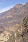 Campos Terraced do Inca e ruínas da vila Fotografia de Stock Royalty Free