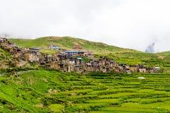 Campos terraced verdes e arquitetura tradicional na vila do NAR, área da conservação de Annapurna, Nepal imagem de stock
