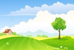 campos verdes stock de ilustración
