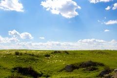 campos verdes Fotos de archivo