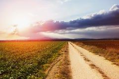 Campos verdes agros cultivados y cielo nublado de la puesta del sol foto de archivo