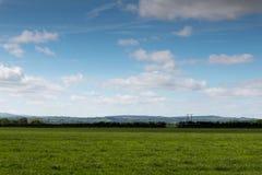 Campos verdes com os céus nebulosos azuis Imagem de Stock Royalty Free