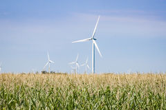 Campos verdes con las turbinas de viento en la distancia imágenes de archivo libres de regalías