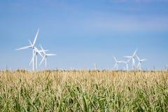 Campos verdes con las turbinas de viento en la distancia fotografía de archivo libre de regalías