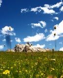 Campos verdes de la montaña Fotos de archivo