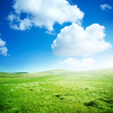 Campos verdes del balanceo Imágenes de archivo libres de regalías