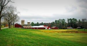 Campos verdes del otoño imágenes de archivo libres de regalías