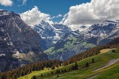 Campos verdes e cidade turística impressionante famosa com os penhascos altos no fundo, Suíça, Europa Foto de Stock Royalty Free