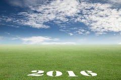Campos verdes en el día soleado Concepto del negocio por el Año Nuevo Imágenes de archivo libres de regalías