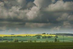 Campos verdes y amarillos Imagen de archivo libre de regalías
