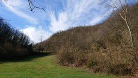 Campos y bosques fotos de archivo