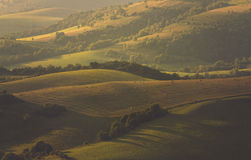 Campos y colinas de la tarde Foto de archivo libre de regalías