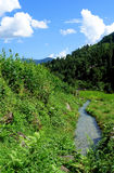 Campos y freshwate del arroz. Paisaje Himalayan Imagenes de archivo