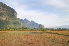 Campos y montaña Imagen de archivo
